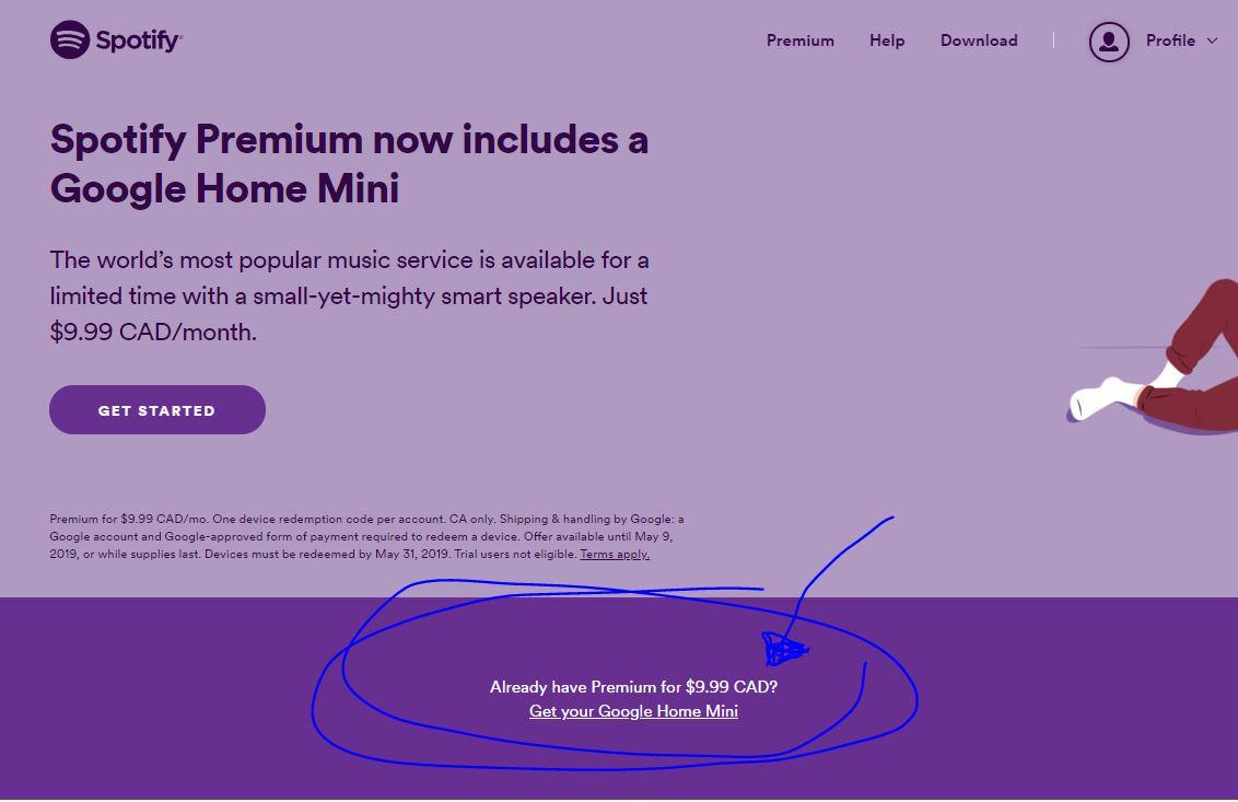 Google home mini not playing music