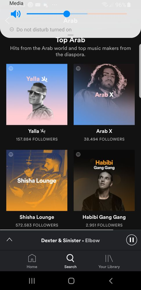 Screenshot_20190806-064501_Spotify.jpg