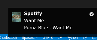 spotify_notification_bug.png