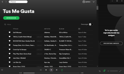 Liked songs playlis on my laptop.png
