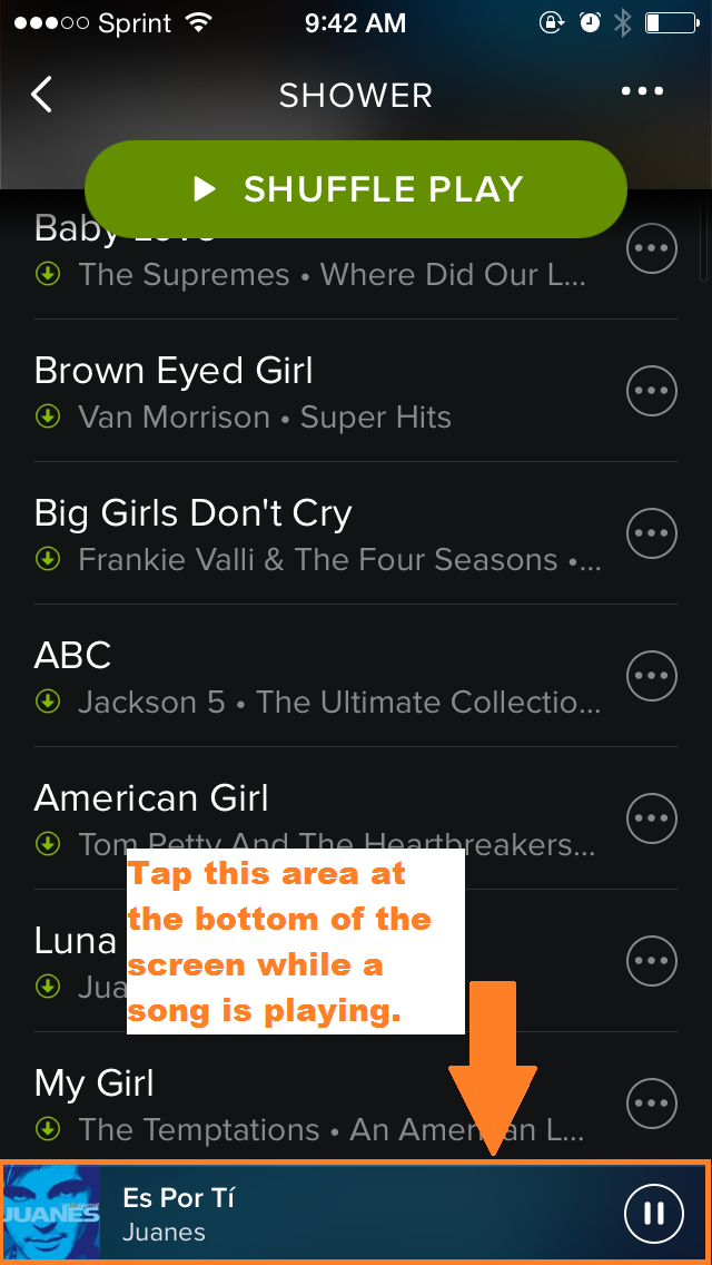 How to put songs in order on spotify iphone