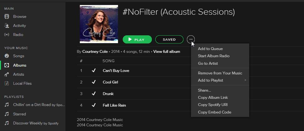 Spotify Desktop (Your Music)