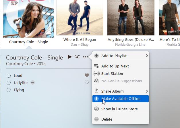 iTunes (My Music)