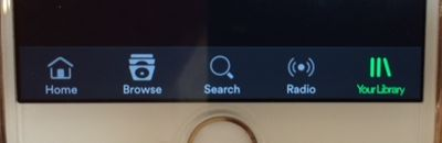 Home button on Iphone but not Ipad!