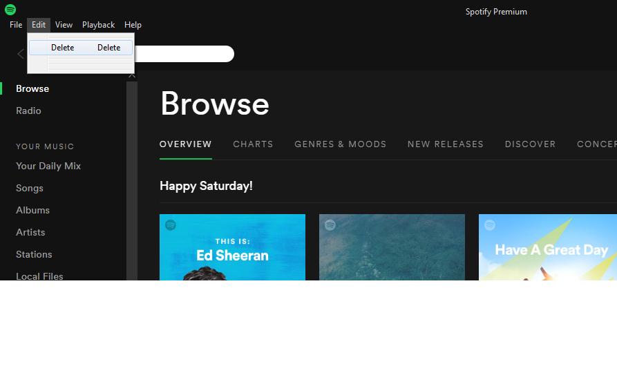 No preferences option - Edit menu only shows