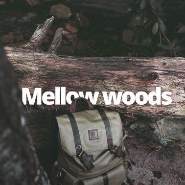 Woods update3.jpg