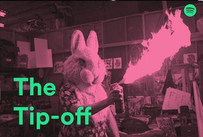 tip off bunny.jpg