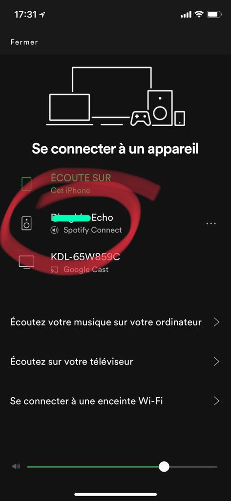 Solved Spotify And Echo Dot The Spotify Community