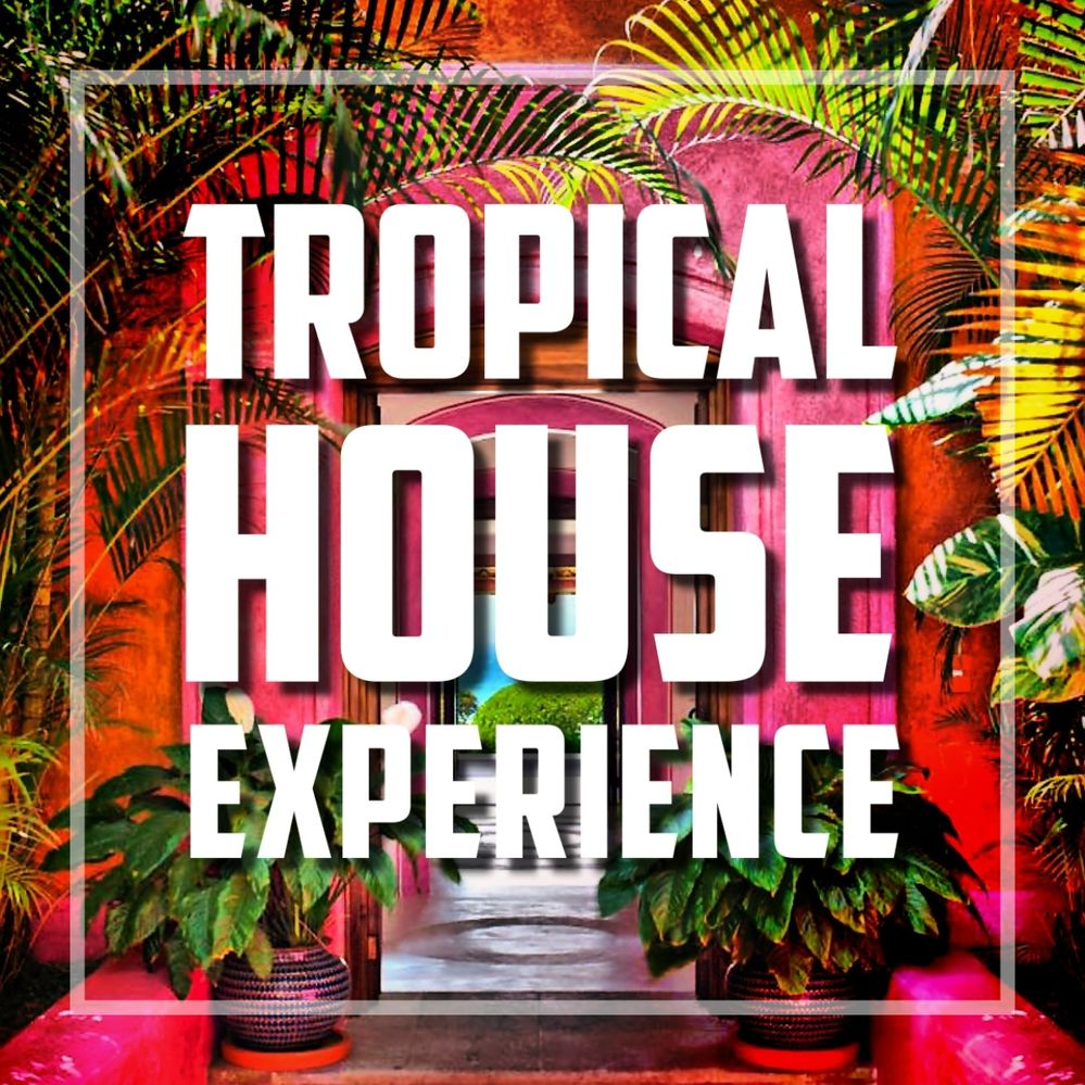TROPICAL_HOUSE_EXPERIENCE_BY_QUIET_GOD.JPG