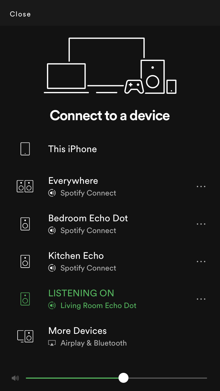 Solved: Amazon Echo Multi-Room Music groups not appearing