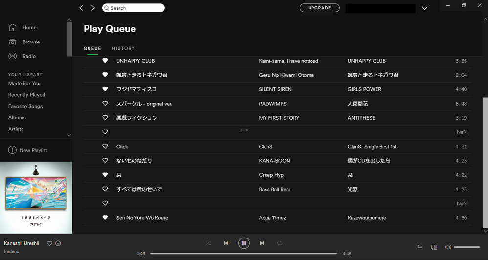 spotify_bug.png