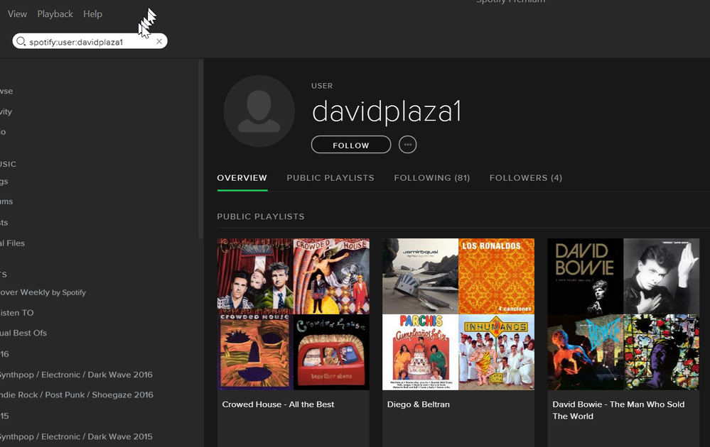 how to search on spotify users