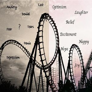 Riding-the-Emotional-Rollercoaster[1].jpg