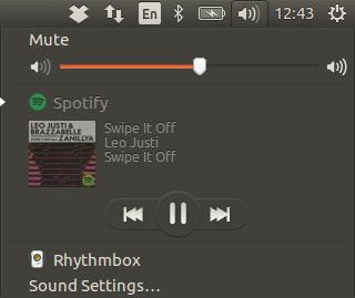 musica da spotify ubuntu